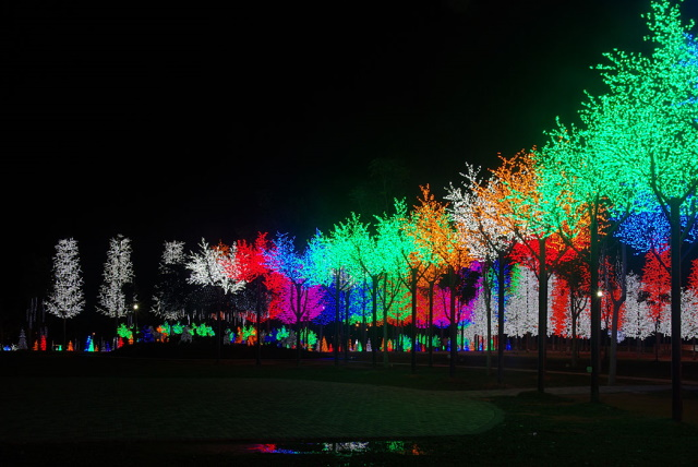 christmas light installers city parks