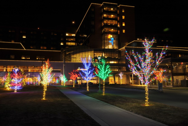 Read more about the article Why Your Business Needs Christmas Lights