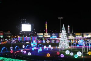 christmas light installers sports complexes tx