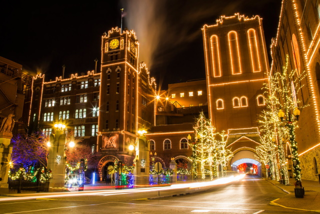 Read more about the article Why Hire Commercial Christmas Light Installers