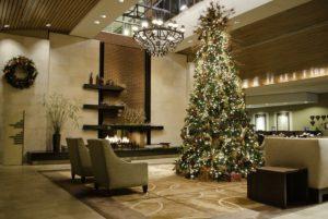 christmas lights for spas salons texas